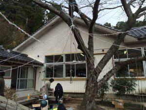 ナイアガラを木に吊します